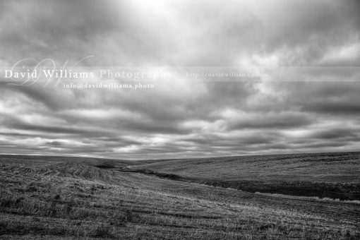 Photo, Photography, Image, Print, Canvas, Metal, Black and White, B&W, Rolling Hills, Landscape