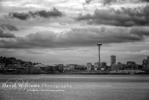 Photo, Photography, Image, Print, Canvas, Metal, Black and White, B&W, Skyline, City, Space Needle