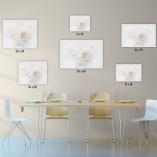 Photo, Photography, Image, Print, Canvas, Metal, Flower,Dahlia, White